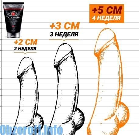 Csak négyféle pénisz létezik