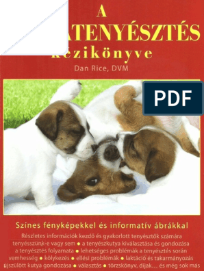 Penimax pénisznövelő tabletta | Kapszula Center