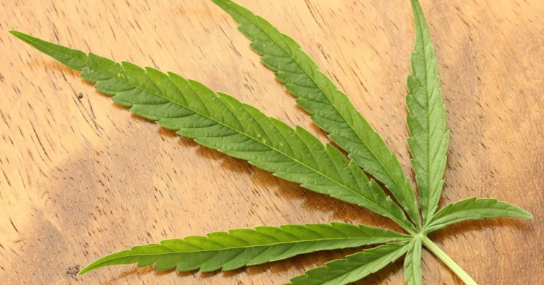 A marihuána impotenssé tesz - EgészségKalauz