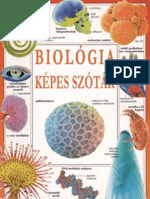 130 tétel végleges.pdf