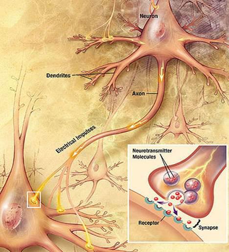 Szenilis prostatitiszből